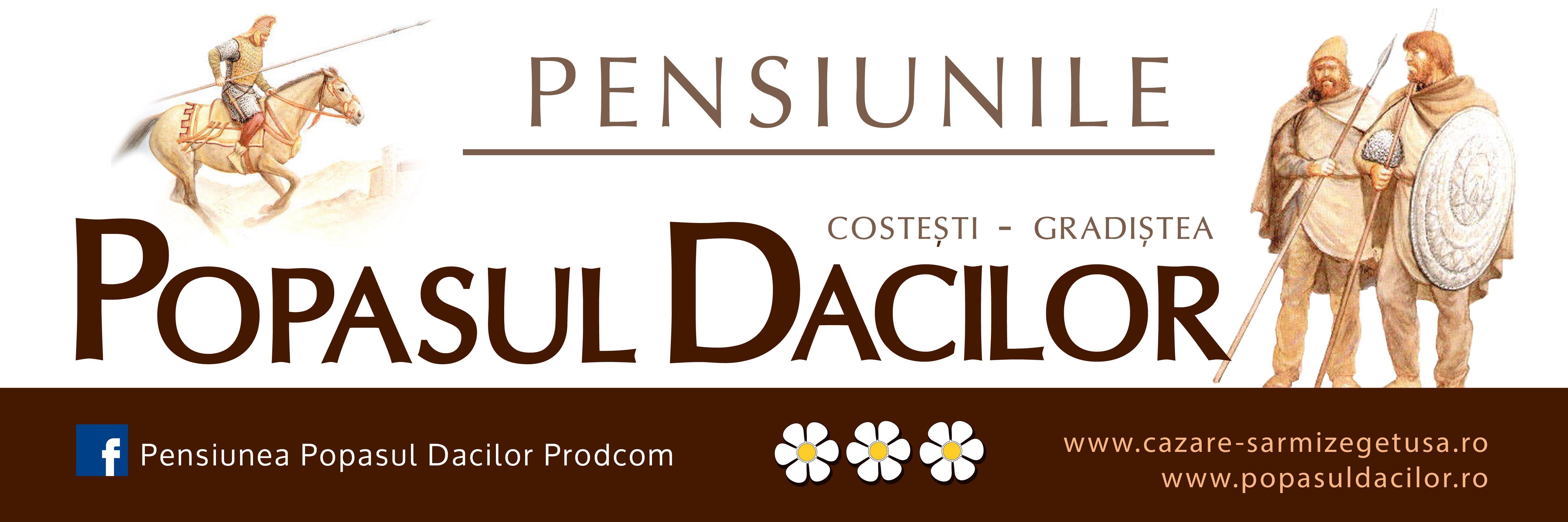 Pensiunile_Popasul_Dacilor_Costesti_Hunedoara