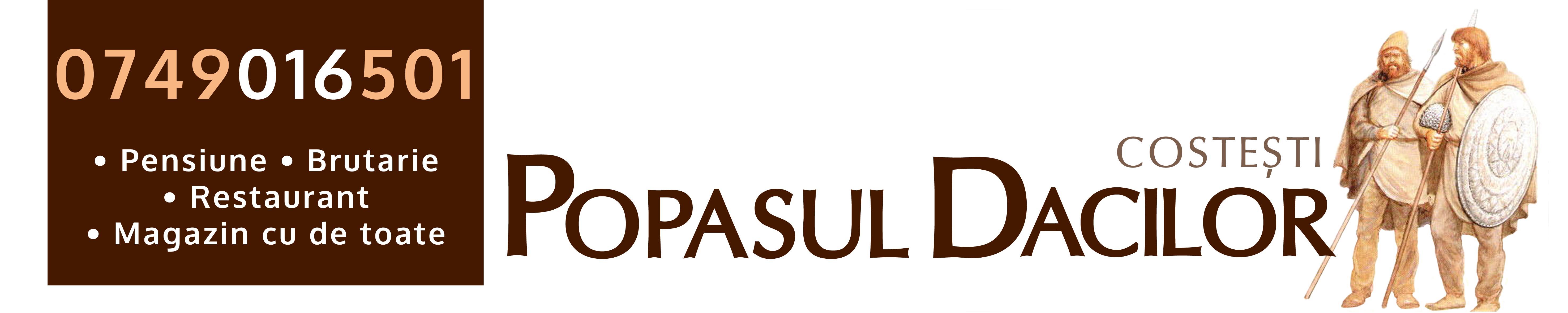 Popasul-dacilor-satul-costesti