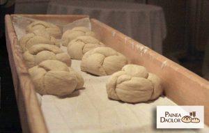 Painea Dacilor, brutaria din Costesti-Hunedoara, paine pe vatra traditionala