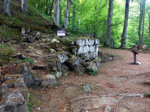 idem, acelasi zid de calcar si ruine, pe terasa de jos, dinspre Marele templu Rotund, sarmizegetusa